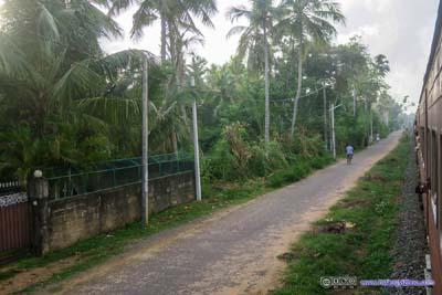 Trail along Railway Track