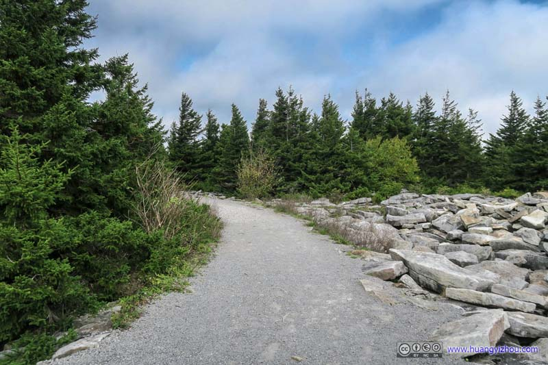 Trail to Viewing Platform