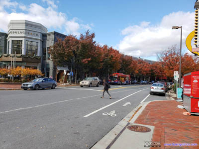 Autumn Colors in Downtown Bethesda
