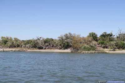 Beach of Matanzas Inlet