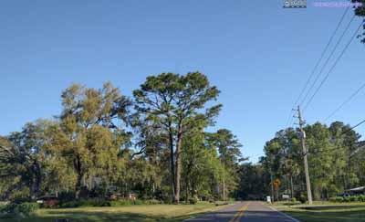 Roads in Suburb Jacksonville