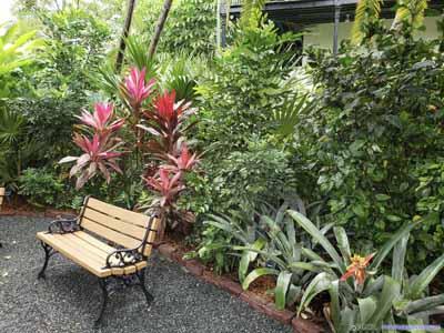 Garden with Bench