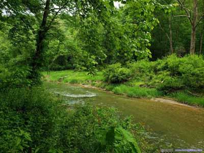 Deer Creek
