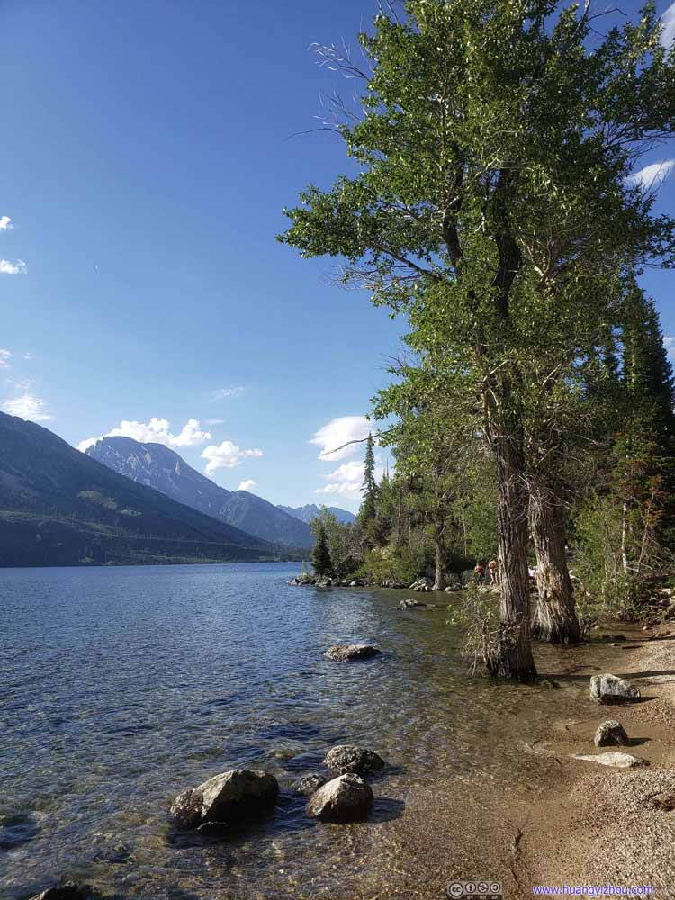 Shores of Jenny Lake