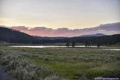 Field under Sunset Glow