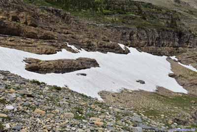 Snow Patch