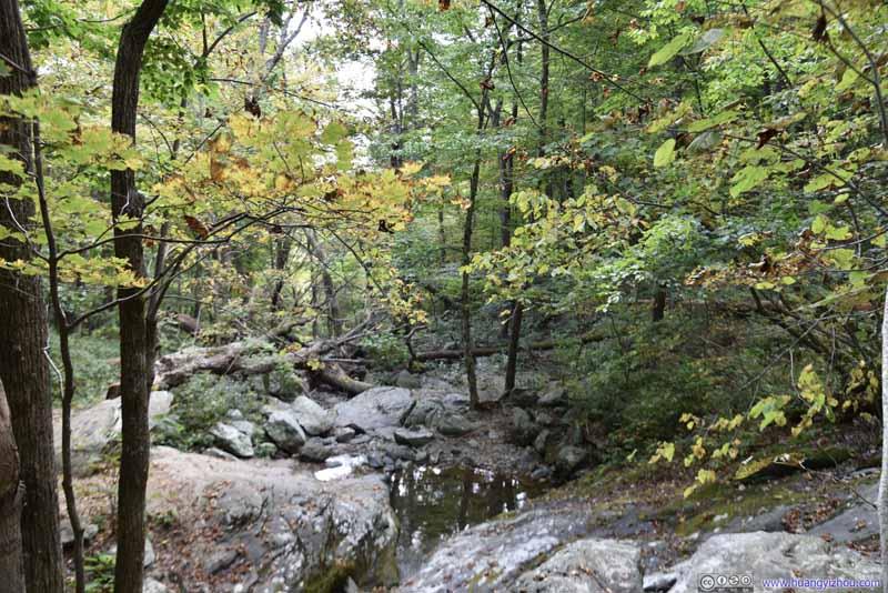Cedar Run in Autumn Colors