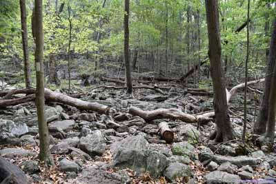 Raven Rocks Hollow