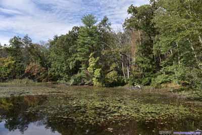 Lenape Lake