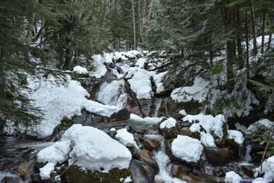 Humpback Creek