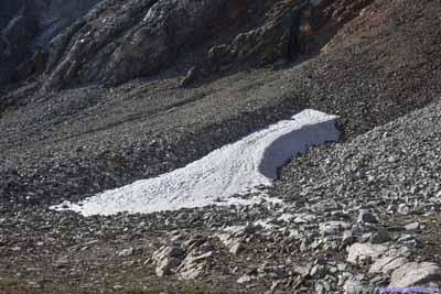 Ice Field among Talus