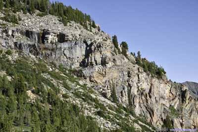 Hillside of Cobb Peak