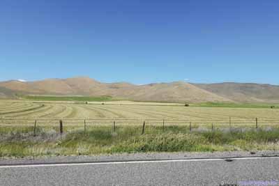 Farmland along Country Road