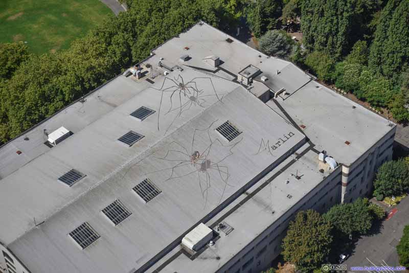 Paint of Spiders on Seattle Center Roof