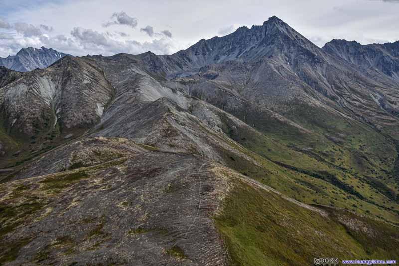 Trail to Matanuska Peak