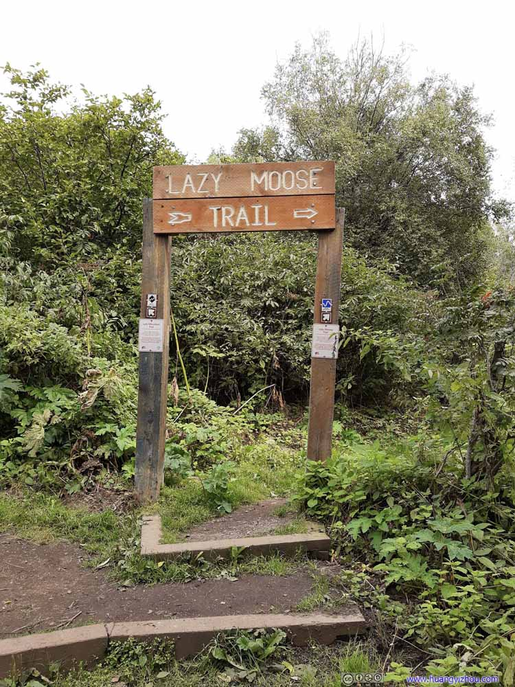 Fork of Trail