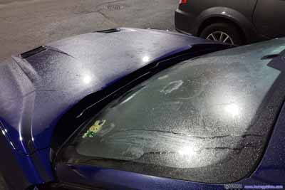 Frost on Car