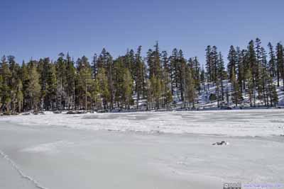 Shores of Granite Lake