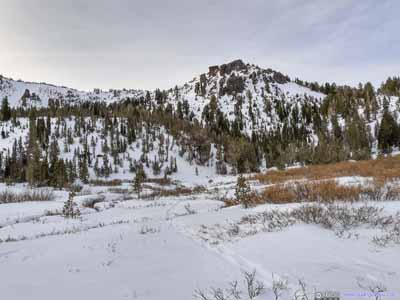 Tamarack Peak Behind