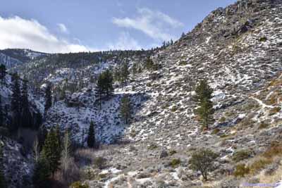 Trail into Canyon