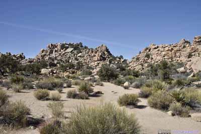 Trail in Hidden Valley