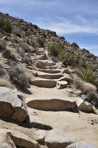 Trail