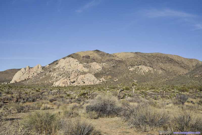 Ryan Mountain from Ryan Ranch Trail