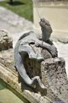 Lizard Fountain