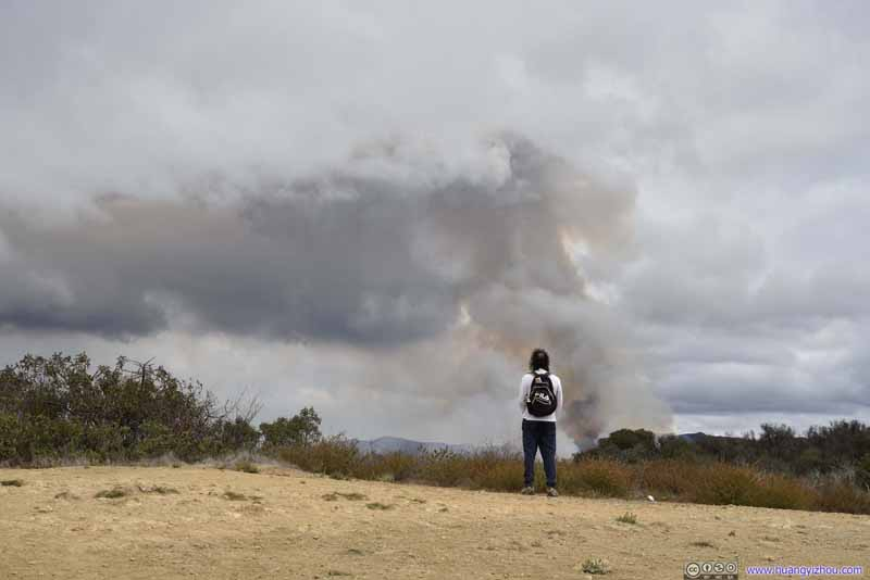 Man Watching Wildfire